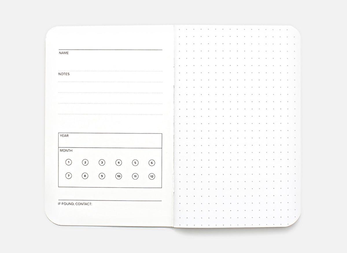 Dot Grid 3-Pack - Muistivihko